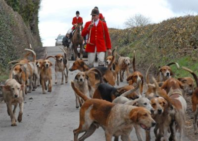HorsHorses and Hounds: Ireland | With Belles Ones and Hounds | With Belles On