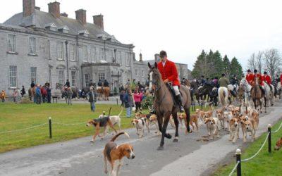 Horses and Hounds: IRELAND