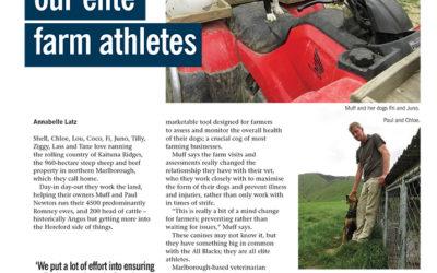 Elite working dogs. NEW ZEALAND