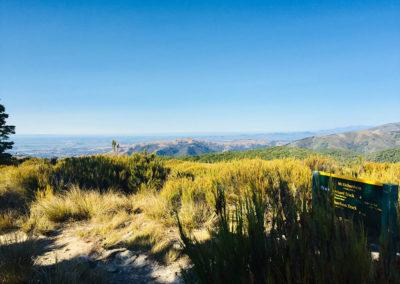 Mt Richardson / With Belles On