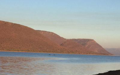 A1 SERIES Loskop Dam. South Africa