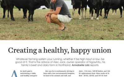 Creating a healthy, happy union. New Zealand