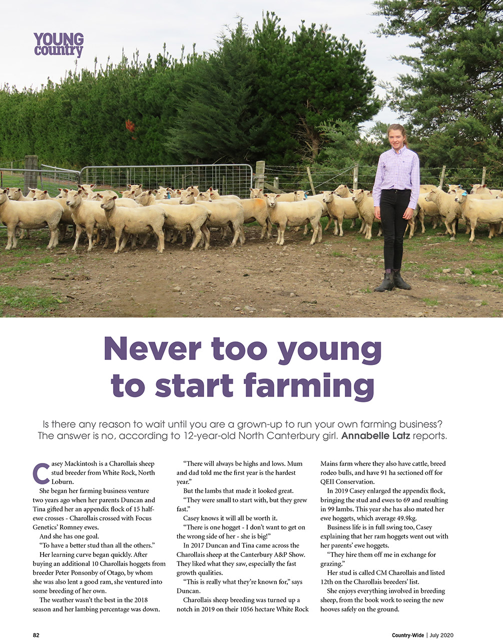 Breeding charollais sheep, never too young | With Belles On