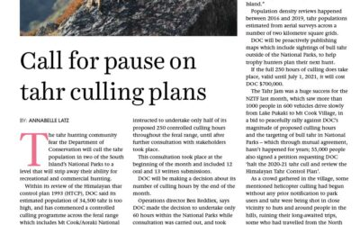 Call for pause on tahr culling plans, New Zealand