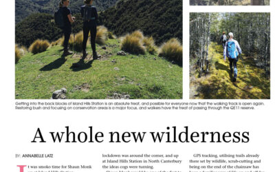 A whole new wilderness